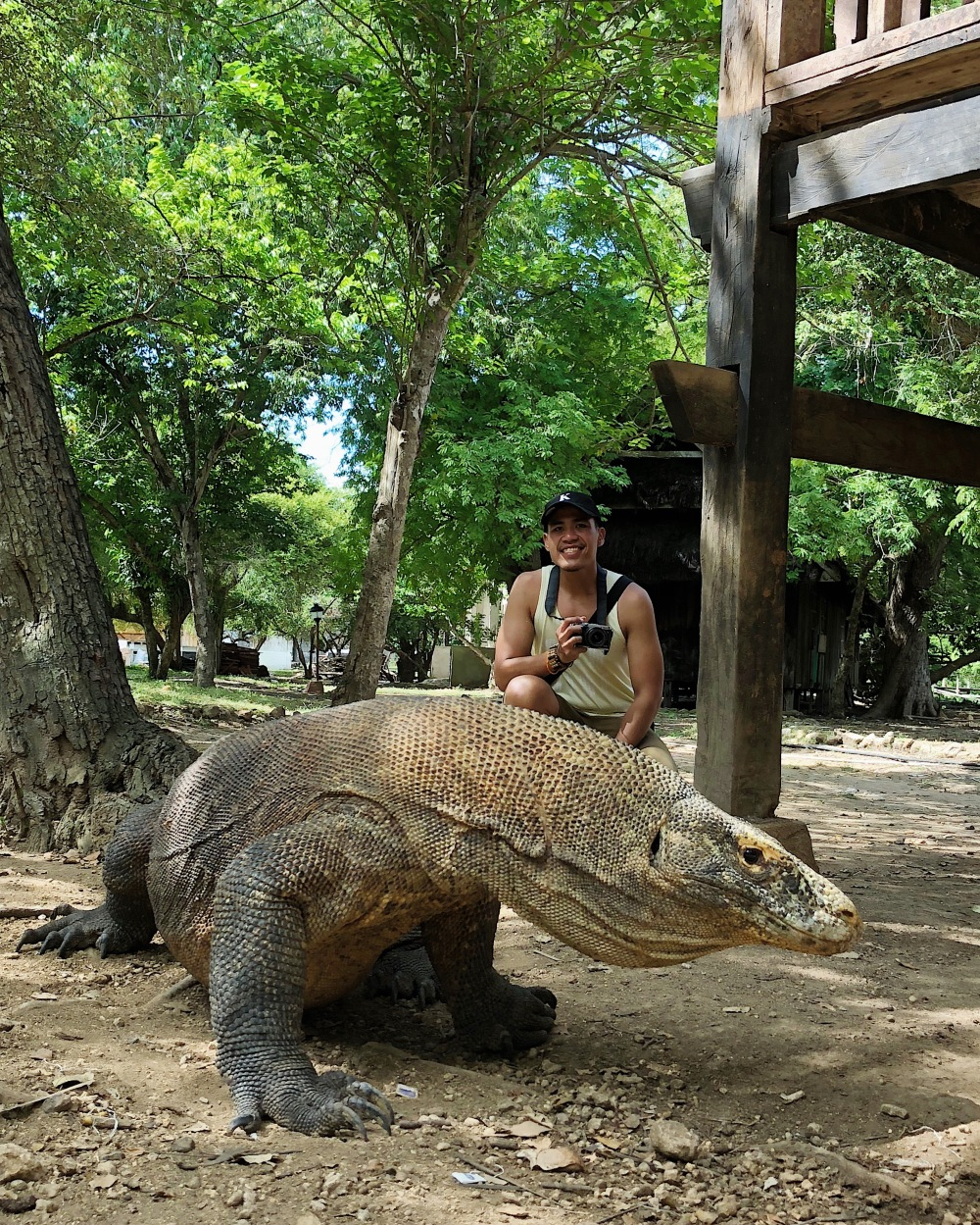 MINGLING WITH THE KOMODO DRAGON.