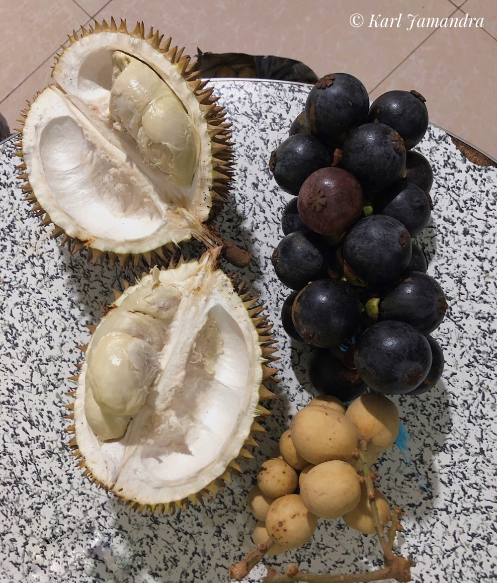 FRUITS OF MINDANAO